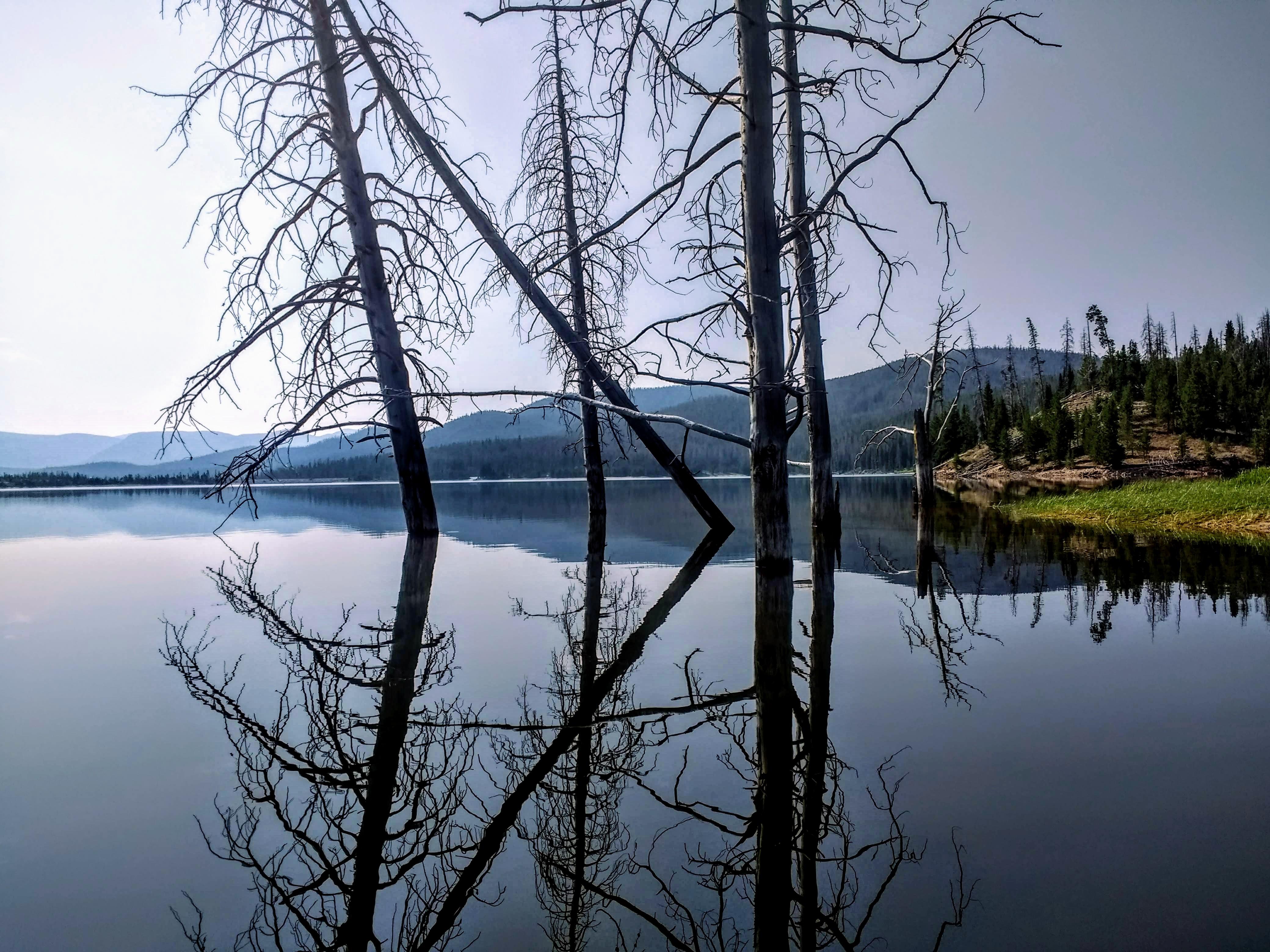Mirrored World