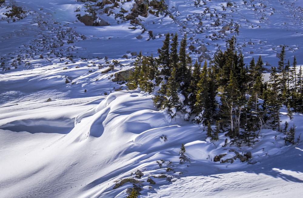 Winter's Wild Side - Second Creek