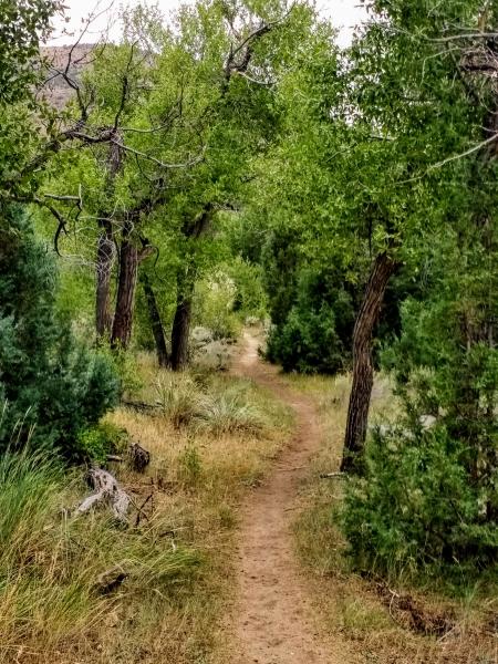 Encampment Riv er Trail
